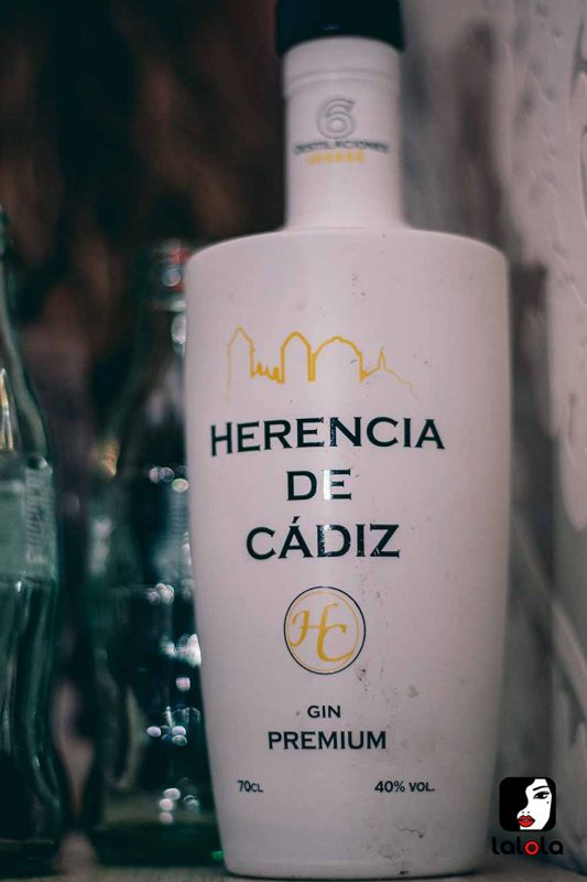 botella Gin Premium